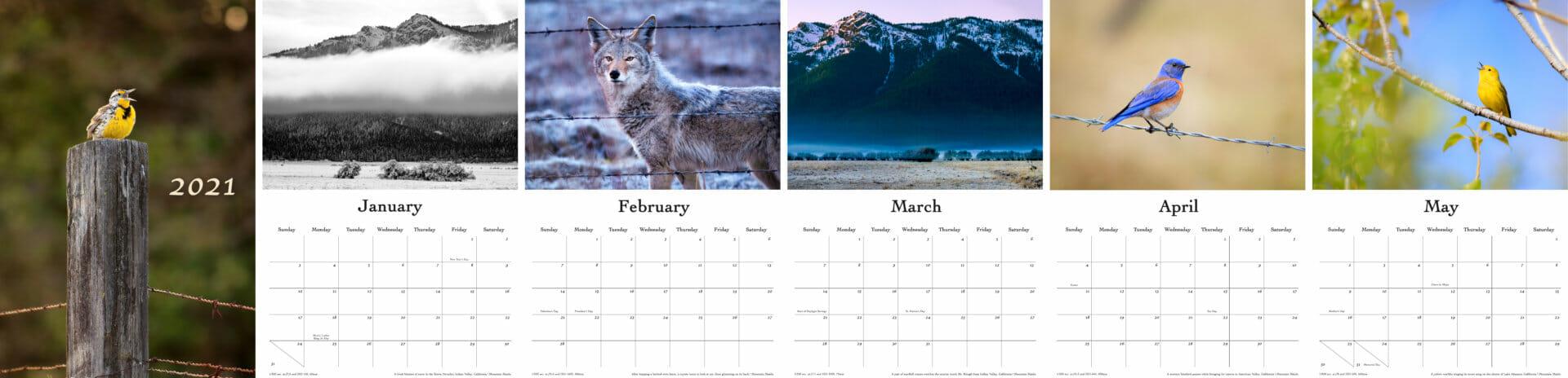 calendar conservation months 2021